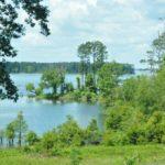 Lake Sam Rayburn